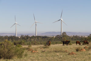 Gouda Wind Farm to begin contributing an additional 138MW to the national power grid